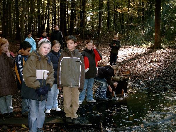 Die Wellbrockquelle liegt im Schlosswald Das Wasser an